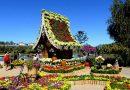 Đặt vé máy bay Tết 2019 đi Đà Lạt tham dự Festival hoa hoành tráng