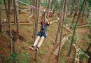 Trải nghiệm trò chơi mạo hiểm ở khu vui chơi Datanla High Rope Course, Đà Lạt