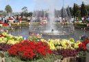 Tham quan vườn hoa thành phố Đà Lạt vào dịp Tết